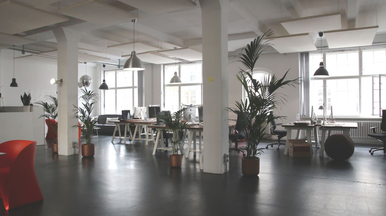 Simple Tips to Transform Your Office into an Eco-friendly Workspace